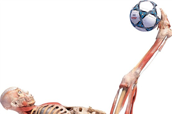 Anatomski cirkus
