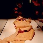 Anatomski cirkus (foto: Bodies The Exhibition, Andraž Pöschl)
