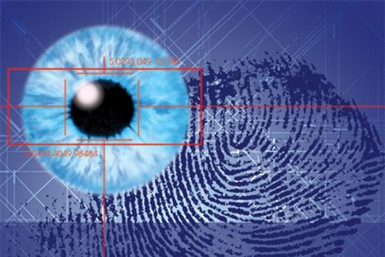 Biometrija: Rešitev ali problem?
