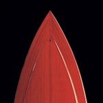 Poezija v lesu. Vse Van Damove barke so narejene ročno – čas izdelave je do leto dni. (foto: Jorge Alvarez, G. Randall Gos )