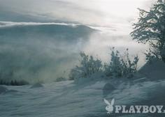 Forum: Ledena vročina