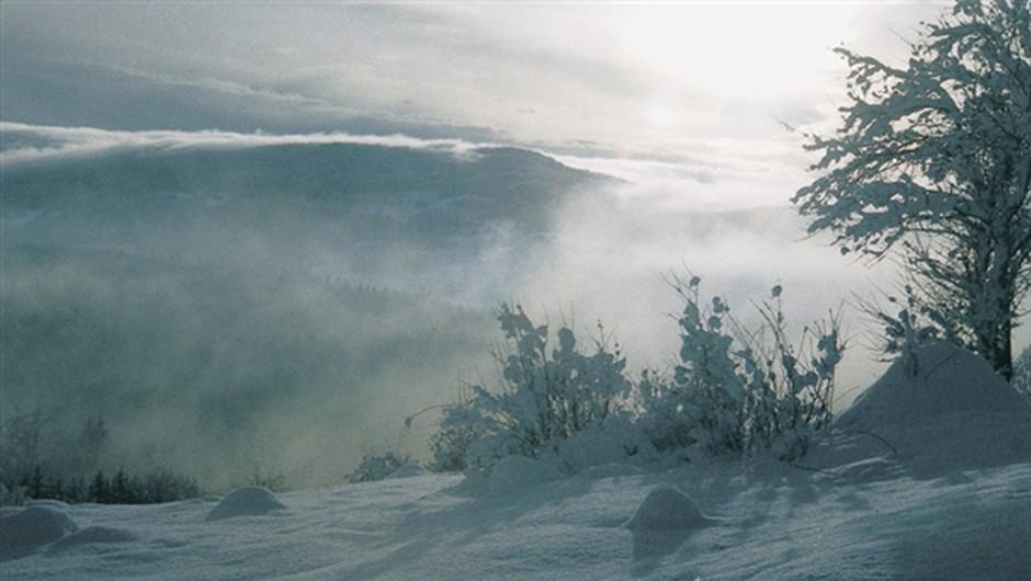Forum: Ledena vročina (foto: Anton Komat)