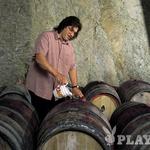 Dušan Erzetič: »Vsako vino ima svoj značaj, tudi Čarga« (foto: Borut Krajnc)