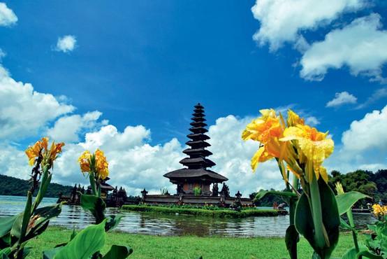 Foto: Indonezijski lepotec Bali