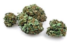 Legalizacija trave