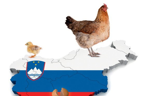 50 let po Kekcu praznujemo 20 let neodvisne Slovenije