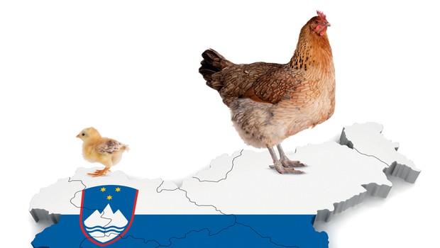 50 let po Kekcu praznujemo 20 let neodvisne Slovenije (foto: (fotomontaža: Goya))