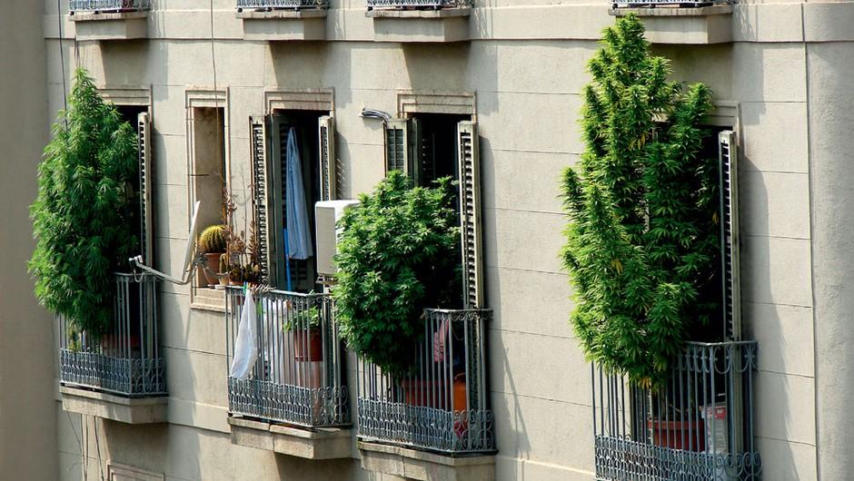 Balkoni v Barceloni (foto: Shutterstock)