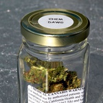 Steklenka z medicinsko konopljo (foto: Shutterstock)
