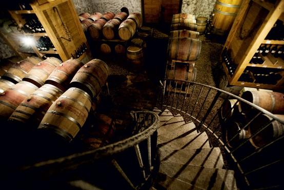Goriška brda in vino Edi Simčič: Brezmejnost užitkov