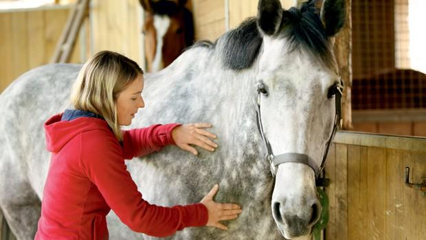 Intervju s Tjašo Kersnik - profesionalno maserko konj (foto: Helena Kermelj)