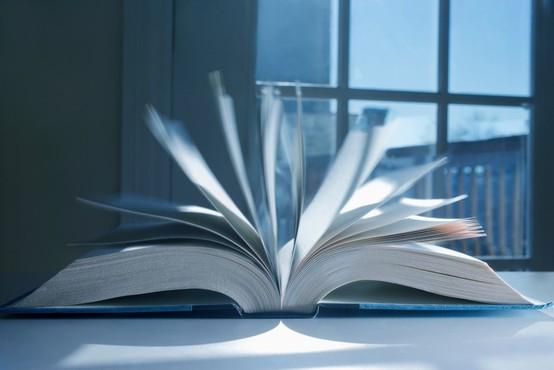Nagrade, ki jih bodo podelili na Slovenskem knjižnem sejmu!