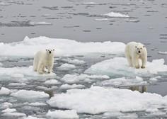 Temperature na Arktiki bi na božični večer lahko podrle rekorde! Se obeta 20 stopinj nad povprečjem?