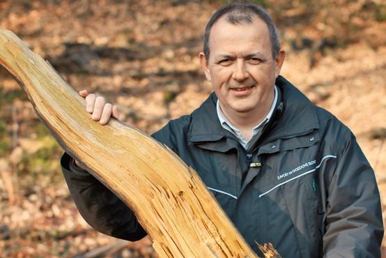 Mag. Andrej Breznikar: Odnos, ki ga ima družba do gozda, je odraz kulture te družbe