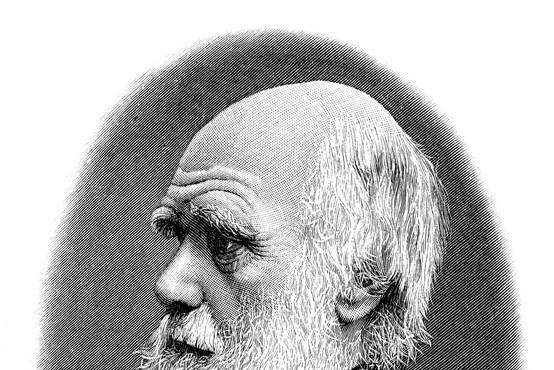 Darwinov dan letos tudi v Sloveniji