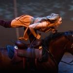Na krilih konjskih moci: konjeništvo kot šport! (foto: shutterstock)
