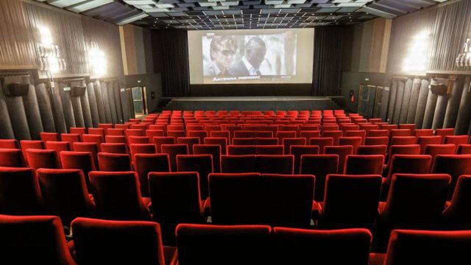 Na tujih filmskih festivalih slavila Nočna ptica in Selitev (foto: STA)
