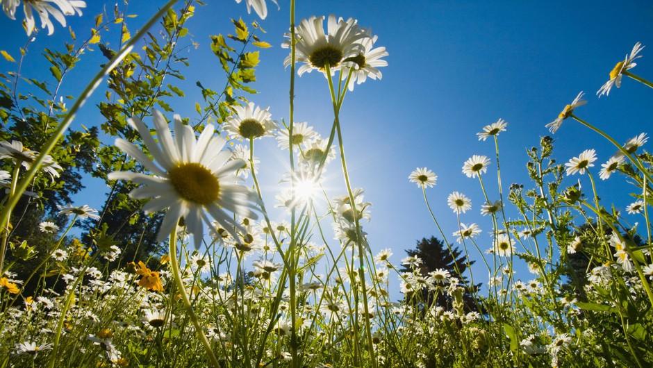 Med prvomajskimi prazniki se obeta suho, sončno in razmeroma toplo vreme! (foto: profimedia)