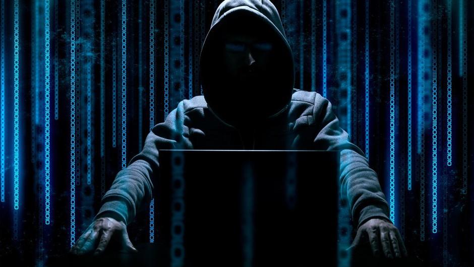 Opozorila zaradi spletnih napadov in poskusov kraje podatkov z univerz (foto: profimedia)