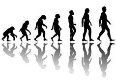 Turčija namerava odpraviti poučevanje evolucije v šolah