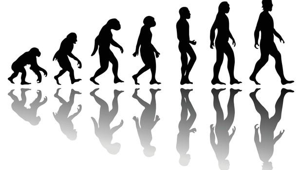 Turčija namerava odpraviti poučevanje evolucije v šolah (foto: profimedia)