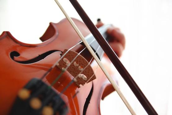 Bivšemu možu uničila violine, vredne več kot 800.000 evrov