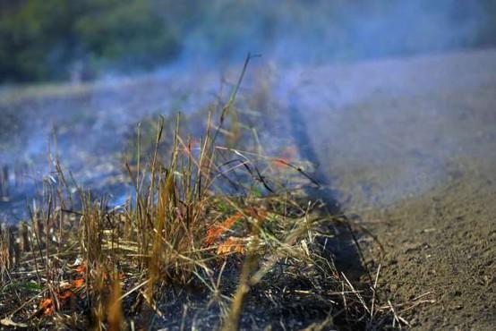 Gori Zakintos! Na grškem otoku že tretji dan divjajo požari!
