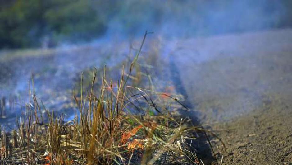 Gori Zakintos! Na grškem otoku že tretji dan divjajo požari! (foto: Tamino Petelinšek/STA)