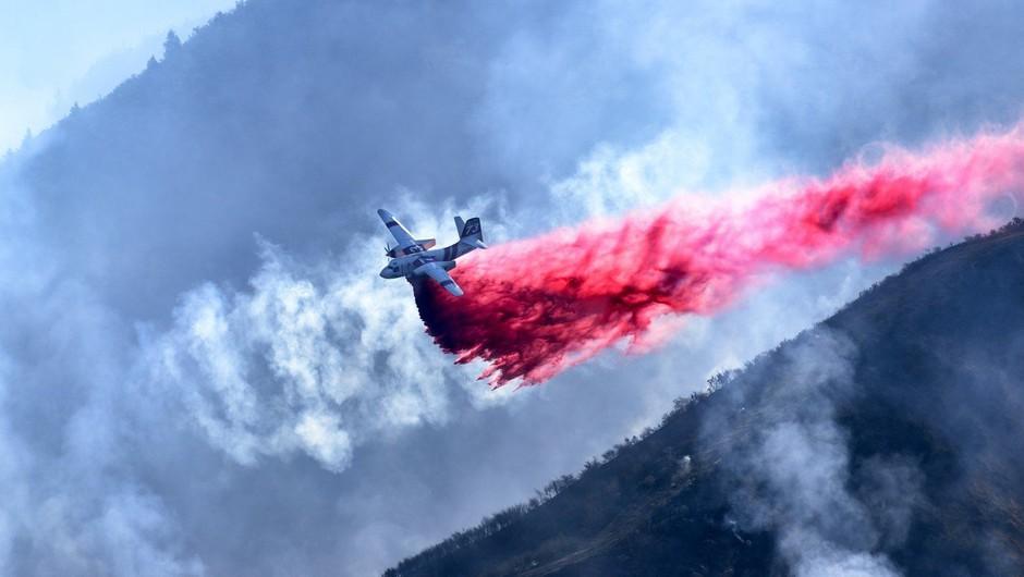 Požari v Kaliforniji zahtevali že najmanj 15 življenj, več kot 200 ljudi pogrešanih (foto: profimedia)