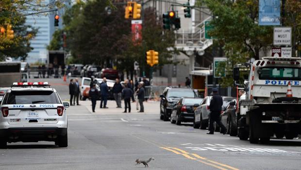 V ZDA več mrtvih v streljanju v nakupovalnem središču (foto: profimedia)