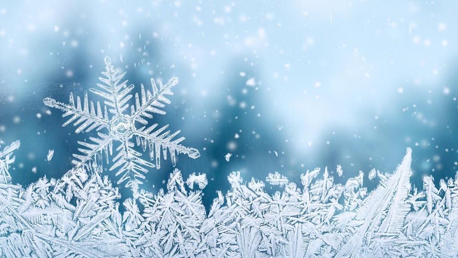Do jutra se bo meja sneženja spustila do nižin! (foto: profimedia)