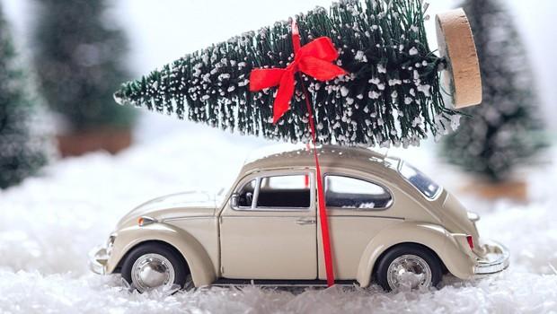 Nemčija: S prevelikim božičnim drevescem podiral prometne znake in ogrožal ljudi! (foto: profimedia)