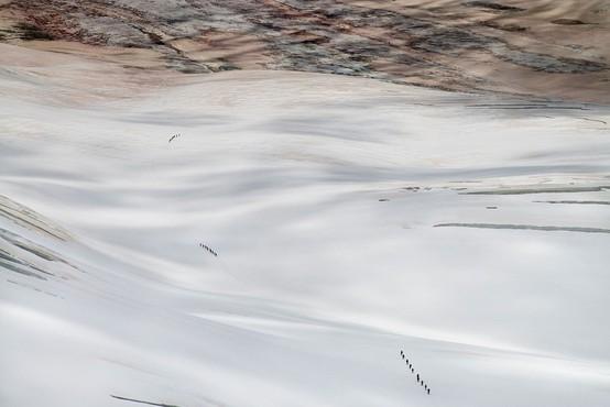 Izjemno redek vremenski pojav: Sneg pobelil sipine v Sahari!