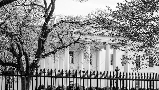 Nekaj zadnjih neuspelih prebojev varnostne ograje Bele hiše (foto: profimedia)