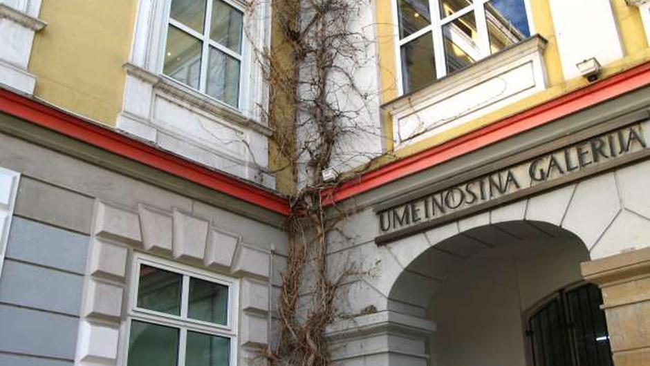 Del pregledne razstave ustvarjanja Janezov Janš tudi v Mariboru (foto: Bojan Šuštar/STA)