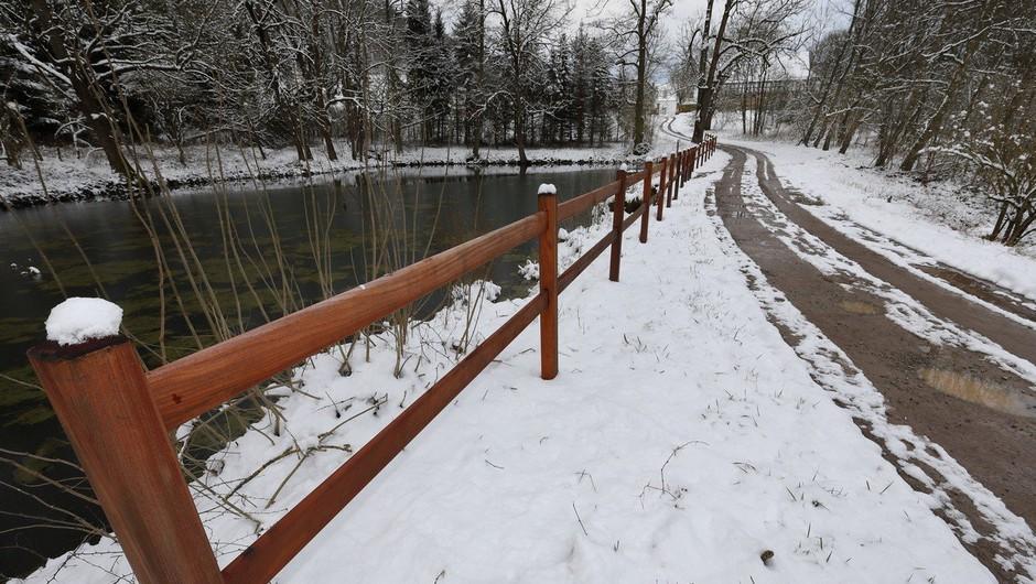 Ponedeljek bo znova prinesel sneg do nižin! (foto: profimedia)
