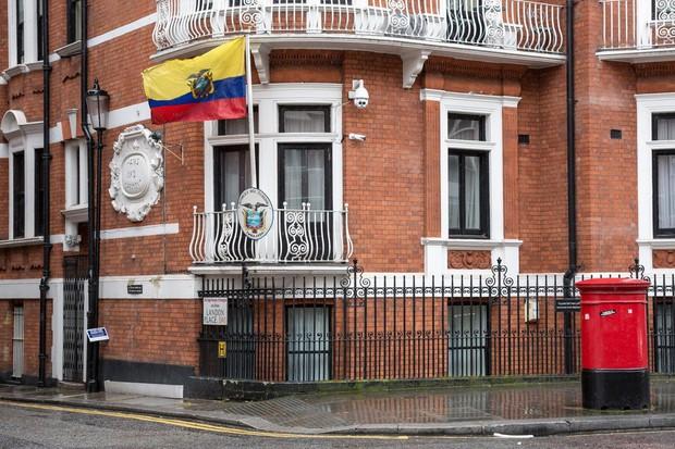 Za Assanga nič več Twitterja! Ekvador mu je odklopil internet! (foto: profimedia)