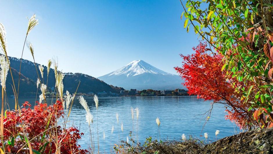 Prebudil se je japonski vulkan Ebinodake! (foto: profimedia)