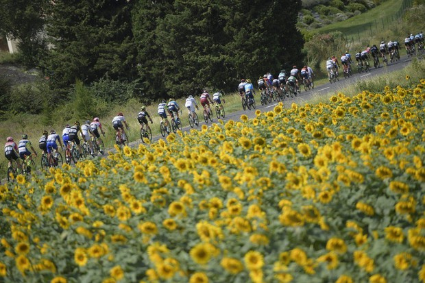 Incident z balami sena in solzivcem prekinil 16. etapo Toura (foto: Tour de France Press)