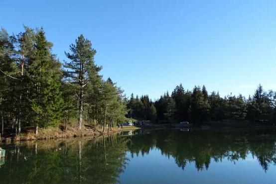 Jezero Rakitna: Kopanje odsvetovano zaradi fekalnih bakterij