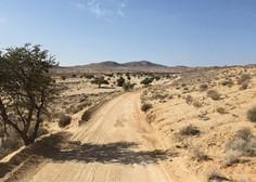 ZDA: Iz nečloveških razmer v puščavi rešili 11 otrok!