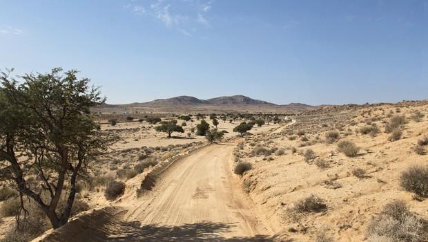 ZDA: Iz nečloveških razmer v puščavi rešili 11 otrok! (foto: Profimedia)