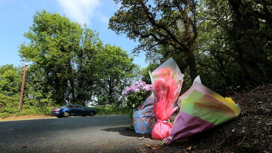 Ceste terjale novo smrtno žrtev (foto: Profimedia)