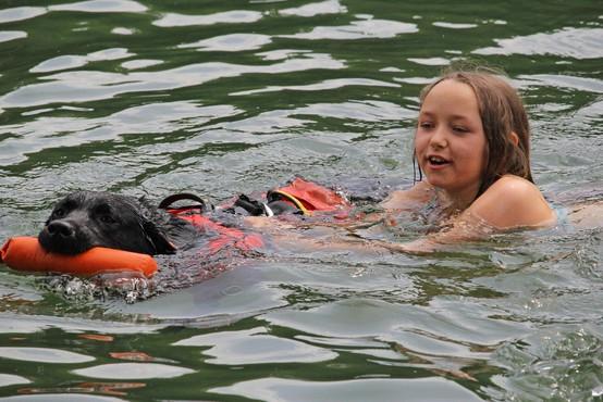 Svetovno prvenstvo reševalnih psov v Ljubljani: 130 psov in vodnikov