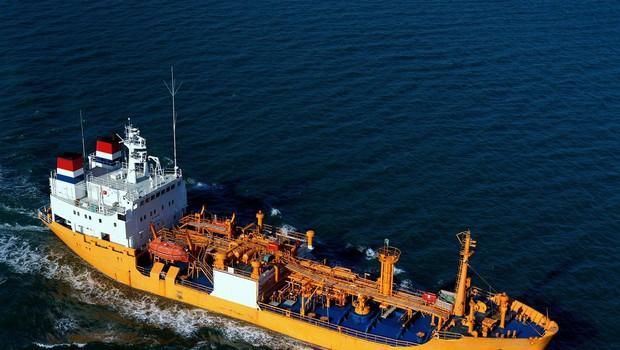 Med 12 ugrabljenimi člani posadke švicarske tovorne ladje je tudi Slovenec (foto: profimedia)