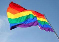 Avstrija: Prva poroka istospolnega para