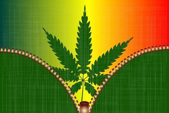 V Kanadi legalizirali marihuano tudi za rekreativne namene, a je Trudeau ne namerava kupiti!
