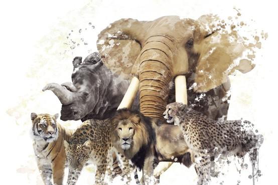 Zemlja po krivdi človeka v 44 letih izgubila kar 60 odstotkov divjih živali