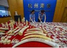 Kitajska nepričakovano odpravlja 25-letno prepoved trgovanja z deli tigrov in nosorogov