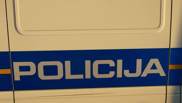 Po odkriti tatvini se je drzni zmikavt vrnil in z nožem napadel varnostnika (foto: profimedia)